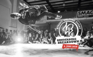 Sønderborg Breakdown 2016